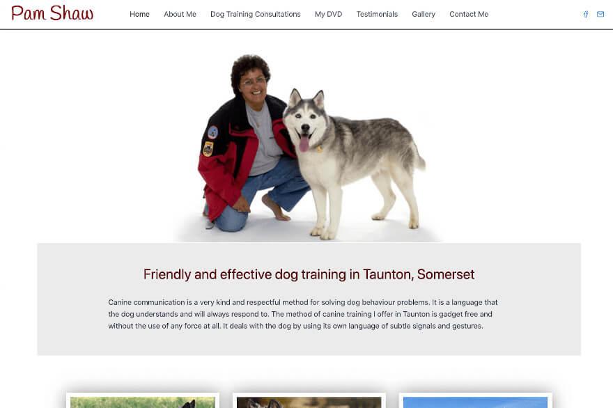 Pam Shaw dog help training taunton somerset